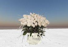 DJWMedia ICE VASE WHIT WHITE ROSES White Roses