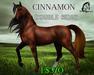 Cinnamon [Teegle Skin] - The Celtique Stallion