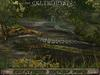 ❃Fantasy Forest Collection :: CREATURED SWAMP ::