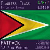 Guyana Flag (Fatpack, 12 Versions)