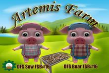 BOX KIT DFS Sow and DFS Boar FSB#16 Limited edition Rare