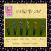 LE ~ Iris Set *Brights* Boxed