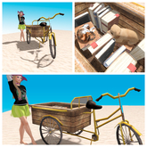 LIMITED OFFER! - The Happy Hat - Storyteller's Burrow - Book Bike