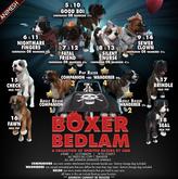 JIAN Boxer Bedlam 9. Sewer Clown Companion BOX