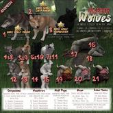 JIAN Warrior Wolves 1. Dire Wolf Mount BOX RARE