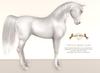 Wild Horse - Teegle Base Coat - Albino [Akhal Teke]