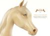 Wild Horse - Teegle Eyes - Gold [Akhal Teke]