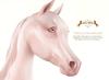 Wild Horse - Teegle Eyes - Princess Pink [Akhal Teke]