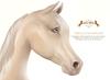 Wild Horse - Teegle Eyes - Champagne [Akhal Teke]