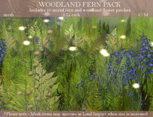 NIFTY FIFTY OFFER! - WOODLAND FERN PACK