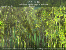 NIFTY FIFTY OFFER! - BAMBOO PACK