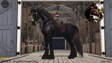 Cheval D'or / TeeglePet Friesian / Spanish Tack. (Boxed)