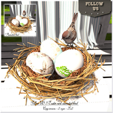Easter price !! Follow US !! Easter nest - Animated bird 2sizes BOX