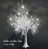 Boudoir White winter tree