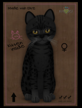 KittyCatS Box - Fur: Ocicat - Black Eyes: Autumn Leaf (Shape: Curious | Pupil: Big) Shade: Natural Tail: Genesis