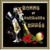 POOFER BONNE et HEUREUSE ANNEE-A (6) Boite