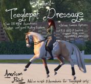 ~Mythril~ Teeglepet Dressage: American Paint