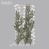 tarte. ivy chevron trellis (white)