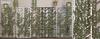 tarte. ivy chevron trellis - FULL SET