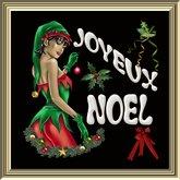 POOFER J.NOEL Femme (20) Boite