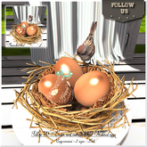 Easter price !! Follow US !! Easter nest - Animated bird (natural eggs) 2sizes BOX