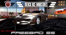[B.A.I] 2002 FreeBird SS