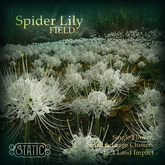 ::Static:: Spider Lily Field {White}