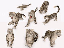 Full Perm Animesh Or Avatar Tiger Or Leopard Or Female Lion Developers Kit 8 Animations Textures