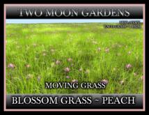 TMG - BLOSSOM GRASS - PEACH* I Prim Moving Grass