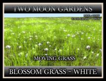TMG - BLOSSOM GRASS - WHITE*
