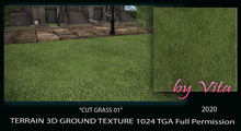 Vita's 3D Ground Texture CUT GRASS 01 Seamless 1024 TGA 2020