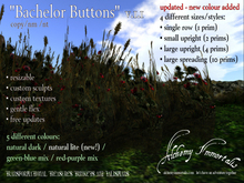 """) AI ( - """"Bachelor's Buttons"""" (Native Irish Grasses Collection) ($425 on sale for $345) (WAS $425 -> NOW ONLY $105!)"""