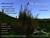 Meadowgrass 700 525