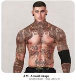 AM. - Arnold shape