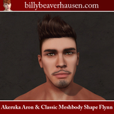 Akeruka Aron & Classic Meshbody Shape Flynn