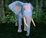 Retired oYo Elephant - Retired Blue Spotted Topaz Eyes (Tamed)