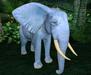 Retired oYo Elephant - Baby Blue Elephant w/Brown Eyes (Tamed)