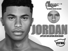 ::LV:. Jordan Applier for Catwa Heads - DEMO BOM included