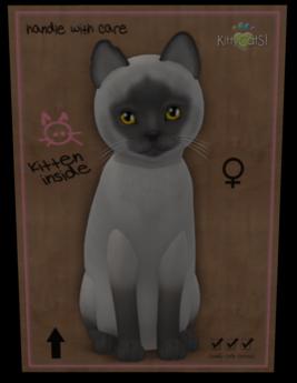 KittyCatS Box - Fur: Siamese - Blue Eyes: Genesis Sunflower (Shape: Curious   Pupil: Big) Shade: Natural Tail: Genesis