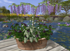 CJ Antique Copper Bath Tub Planter Wisteria + Roses