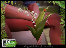 Muguet - Lilies of the valley
