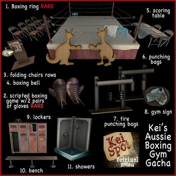2. Kei's Aussie Boxing Gym Gacha (boxing game) RARE