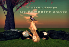 .::Y&R::.Design ~Vampire Diaries~(boxed)pose Stefen Elena Damon