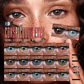 LOTUS. Conspicuous Eyes 11 BOX