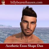 Niramyth Aesthetic Enzo Shape Dan