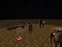 Public Horse Rezzer boxed