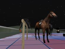 public horse rezzer style c v1 boxed