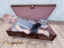 *SF* suitcase
