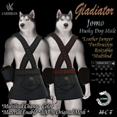 JOMO GLADIATOR HUSKY MALE BOX wear me)