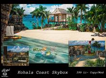 BD/Inkme Kohala Coast  Skybox-Box